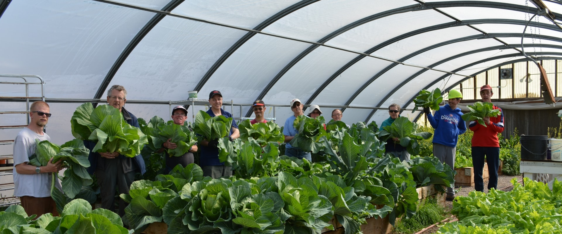Group of developmentally disabled adults celebrating in lettuce garden